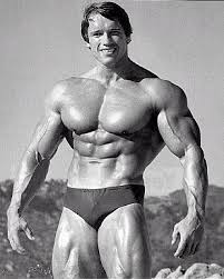 Arnold picture